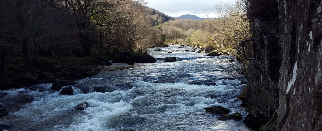 the welsh countryside can be accessed from tudor lodge porthmadog